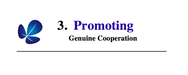 3. Promoting Genuine Collaboration